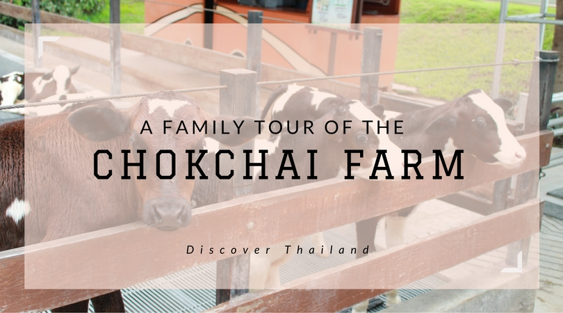A family tour of the Chokchai Farm in Thailand| Confidential Mommy Talks
